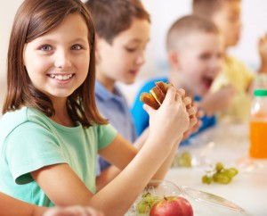 School Lunch Providers